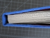 Blueberry book spine