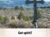 """Taos ad, """"Got spirit?"""", 2009"""